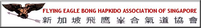 Flying Eagle Bong Hapkido Singapore